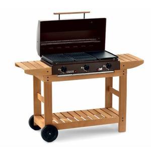 Barbecue MULTIGAS gas metano Bst PUKET acciaio piastra ghisa 2 griglie bruciatori