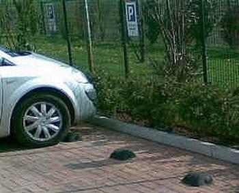 Bloccaruota per parcheggio e garage