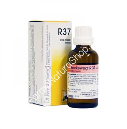 DR. RECKEWEG R37 Gocce