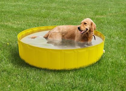 Piscina per animali MY DOG POOL 220 diametro 220 alta 30