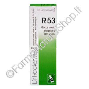 DR. RECKEWEG R53 Gocce
